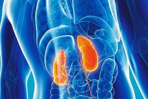 Qué es la acidosis y coma diabético