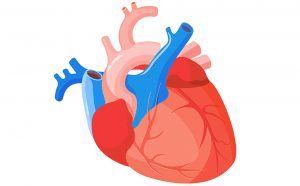 Bypass coronario